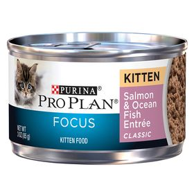 Purina Pro Plan Focus Kitten Food Size 3 Oz Ash Copper Gum