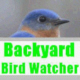 BackyardBirdWatcher WildbirdJewelry