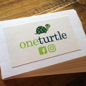 One Turtle Kids