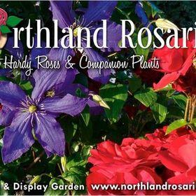Northland Rosarium