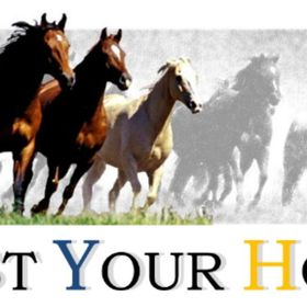 Trust-your-Horse