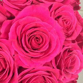 Coque Kenzo Chiara blanche à motif fleuri rose pou