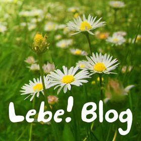 LebeBlog von Elias Fischer