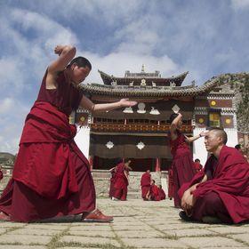 Tibetan Connections