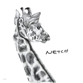 NETCH