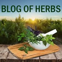 Blog of Herbs
