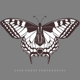 Cara Hodge Photography