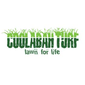 Coolabah Turf