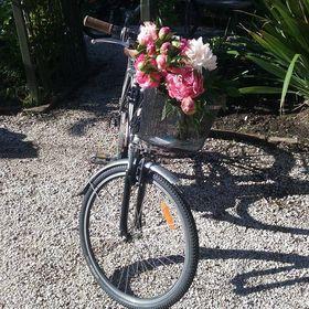 ladyecyclist
