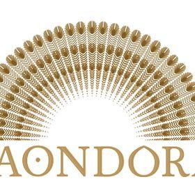 Thes Paondora