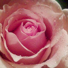 Gaby Rosas