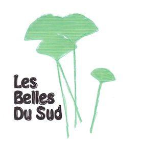 Les Belles Du Sud Bijoux