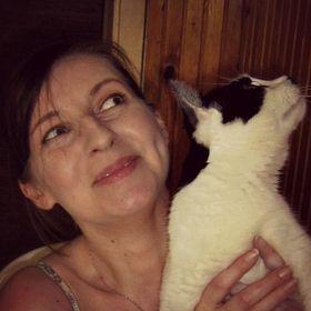 Cat Urine Problems Eliminated
