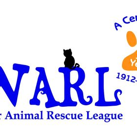 Worcester Animal Rescue League Worcesterarl Profile Pinterest
