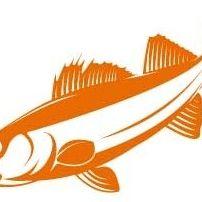 Best Ontario Fishing