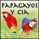 Papagayos y Cía. Tienda de loros en Madrid