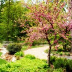 Taltree Arboretum & Gardens