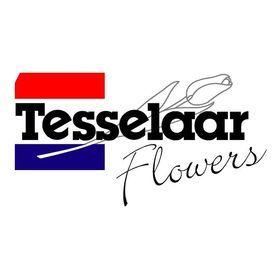 Tesselaar Flowers