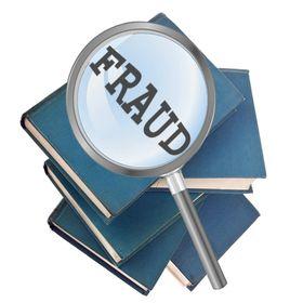 The Fraud Chronicles