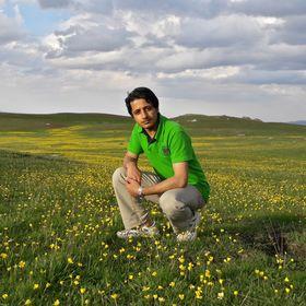Reza Pirboudaghi