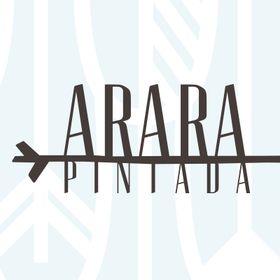Arara Pintada