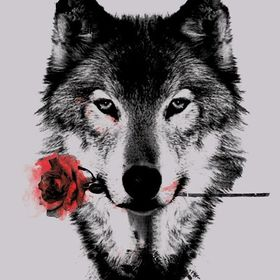 Lucy The Wolf
