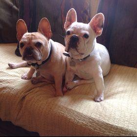Humphrey and Murphy