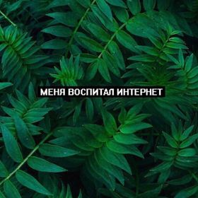 kivvi_kate