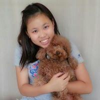 Alina Wong (alinaswong) on Pinterest