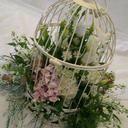 Sandras flowerstudio
