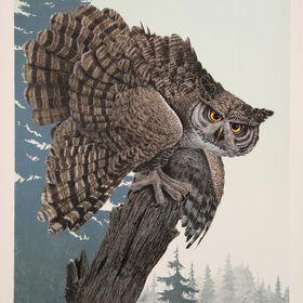 OwlGleam