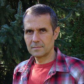 Stefan Gales