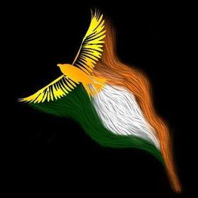 Sone Ki Chidiya- The Blog
