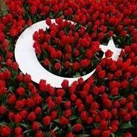 Sultan Sülüman