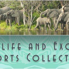 Wildlife & Exotic Resorts Collection 7