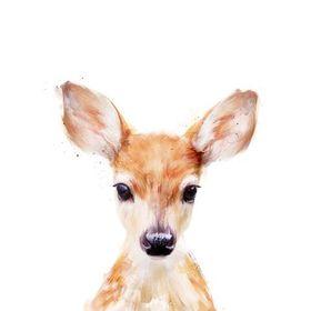 brave deer