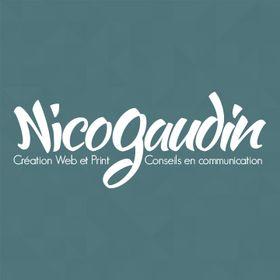 Nicolas Gaudin