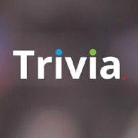 Trivia Company