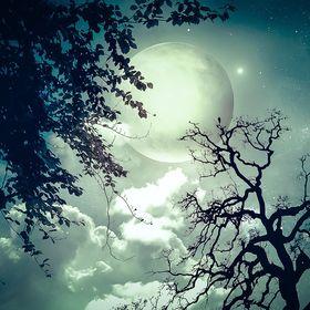 Sueños y Significados