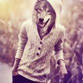 Laddy Wolf