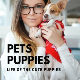 Pets Puppies l Cute Cats & Lovely Dogs l Domestic Animals 🐾