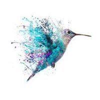 Hummingbird Envi