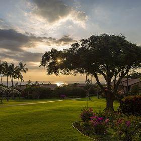 Your Maui Escape
