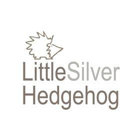 Little Silver Hedgehog