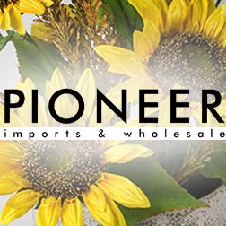 Pioneer Imports & Wholesale
