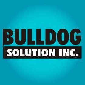 Bulldog Solution Inc.