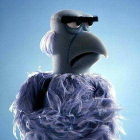 Sam The Eagle 1