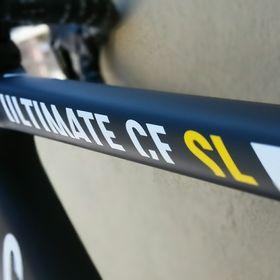 1 resin sticker for racing bikes compatible  Pinarello white