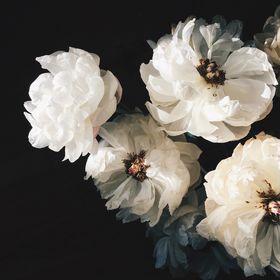 Krissy Price (Pollen Floral Design)