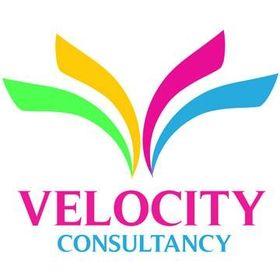 Velocity Consultancy| Web Design & Development Company in Mumbai